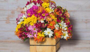 Saiba como montar arranjos de flores em casa   Flora Horizonte