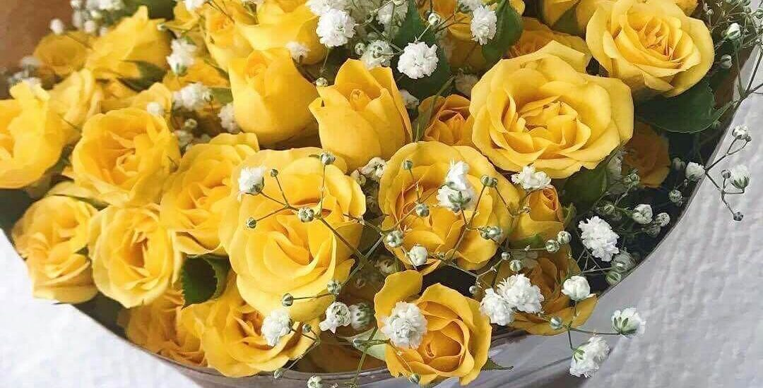 Como cuidar corretamente de um buquê de flores | Flora Horizonte